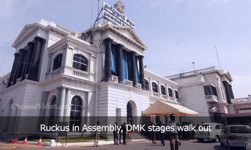 Ruckus in Assembly, DMK stages walk out