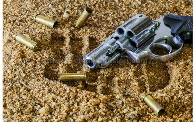 Work pressure forces constable to shoot self