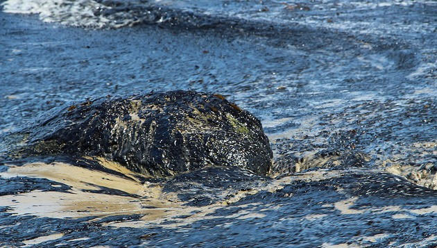 Experts fear about effects of oil spill in sea