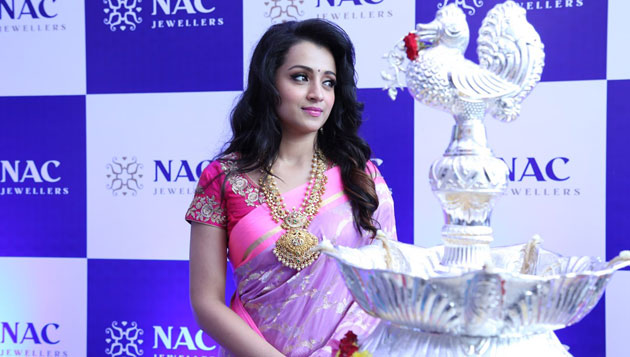 It's official: Trisha in Saamy 2