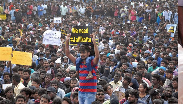 Jallikattu youth start political party, to contest in civic polls