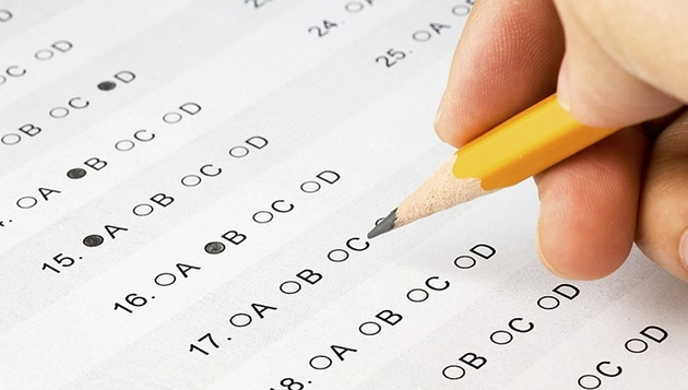 Combined Geo-Scientist and Geologist Examination, 2017