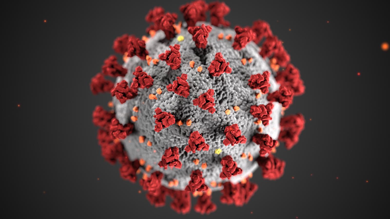 India reports 35, 662 fresh coronavirus cases